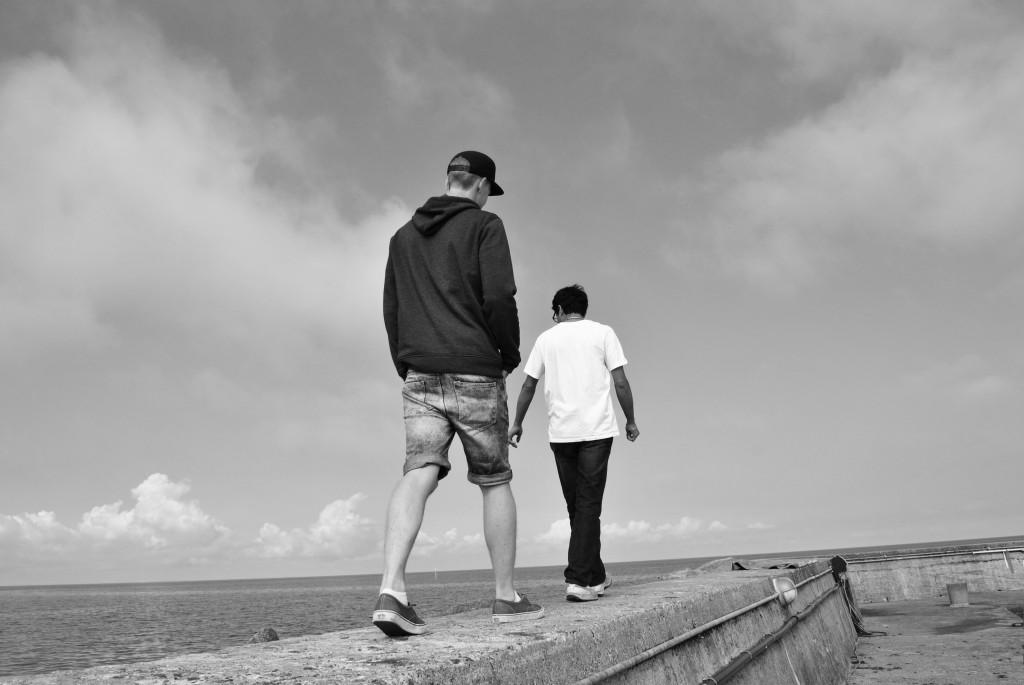 promenadvidhamnen